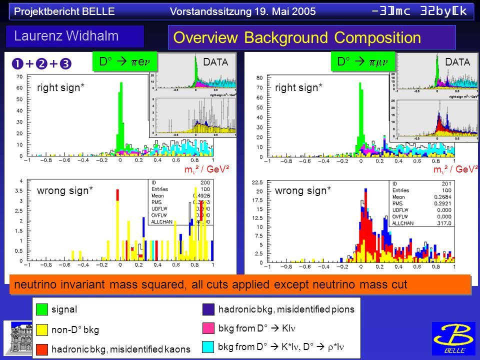 Projektbericht BELLE Vorstandssitzung 19. Mai 2005 -3]mc 32by[k Overview Background Composition neutrino invariant mass squared, all cuts applied exce
