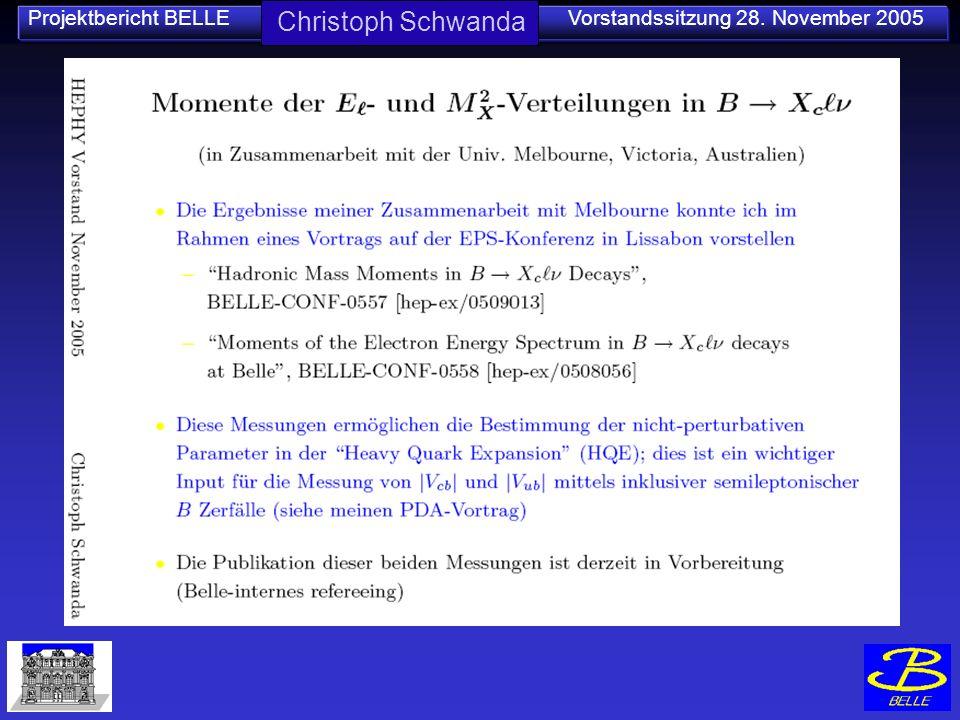 Projektbericht BELLE Vorstandssitzung 28. November 2005 Christoph Schwanda