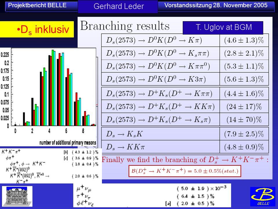 Projektbericht BELLE Vorstandssitzung 28. November 2005 Gerhard Leder T. Uglov at BGM D s inklusiv
