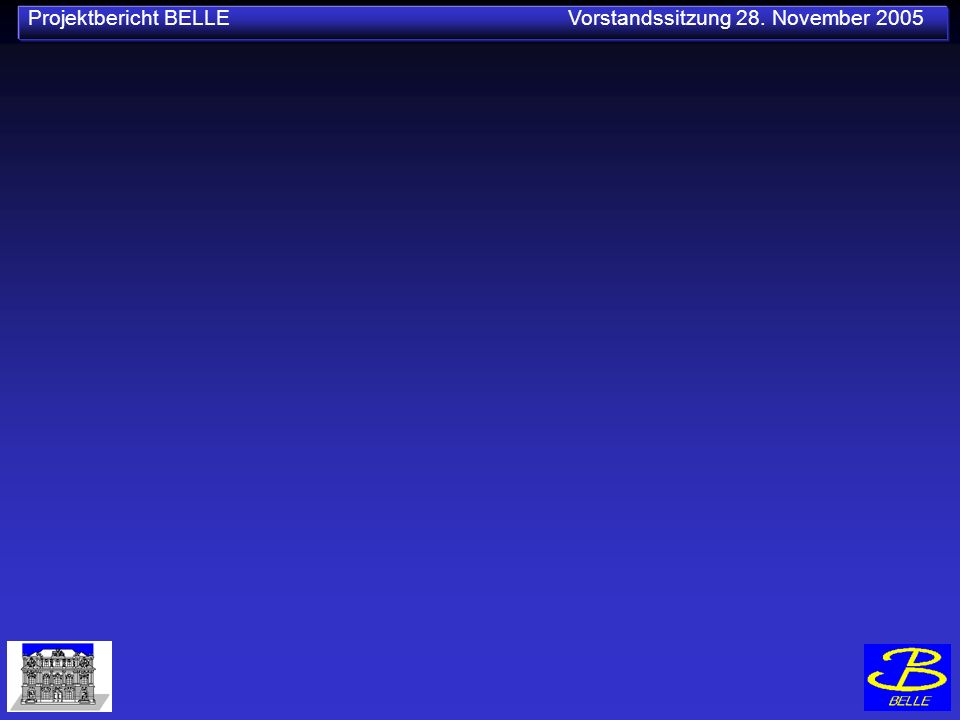 Projektbericht BELLE Vorstandssitzung 28. November 2005