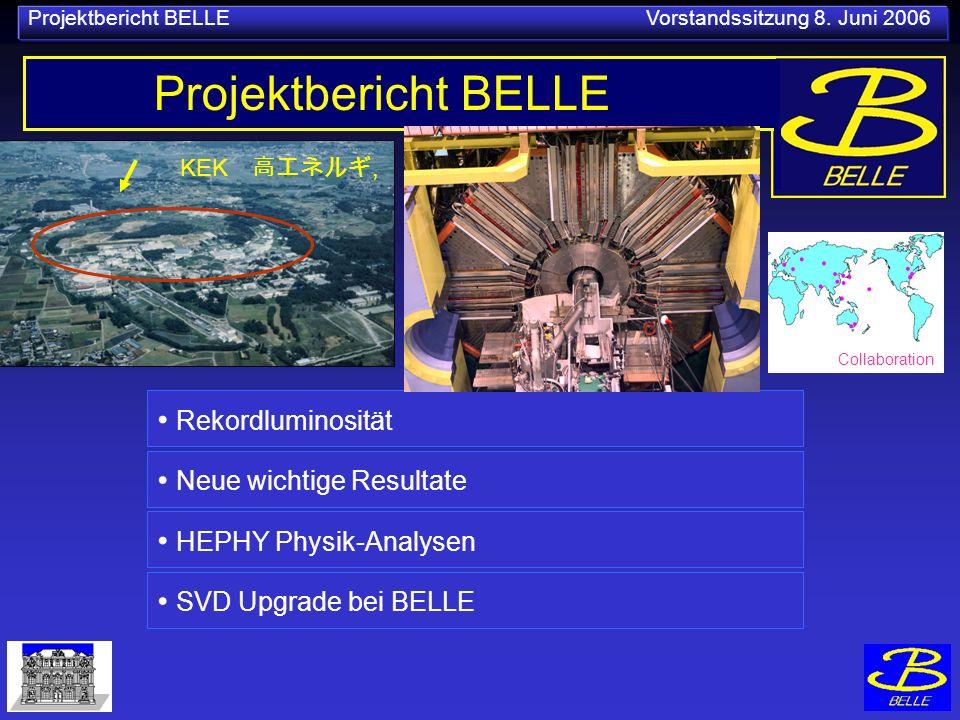 Projektbericht BELLE Vorstandssitzung 8.