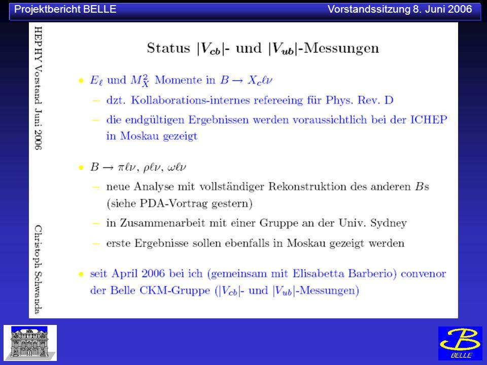 Projektbericht BELLE Vorstandssitzung 8. Juni 2006