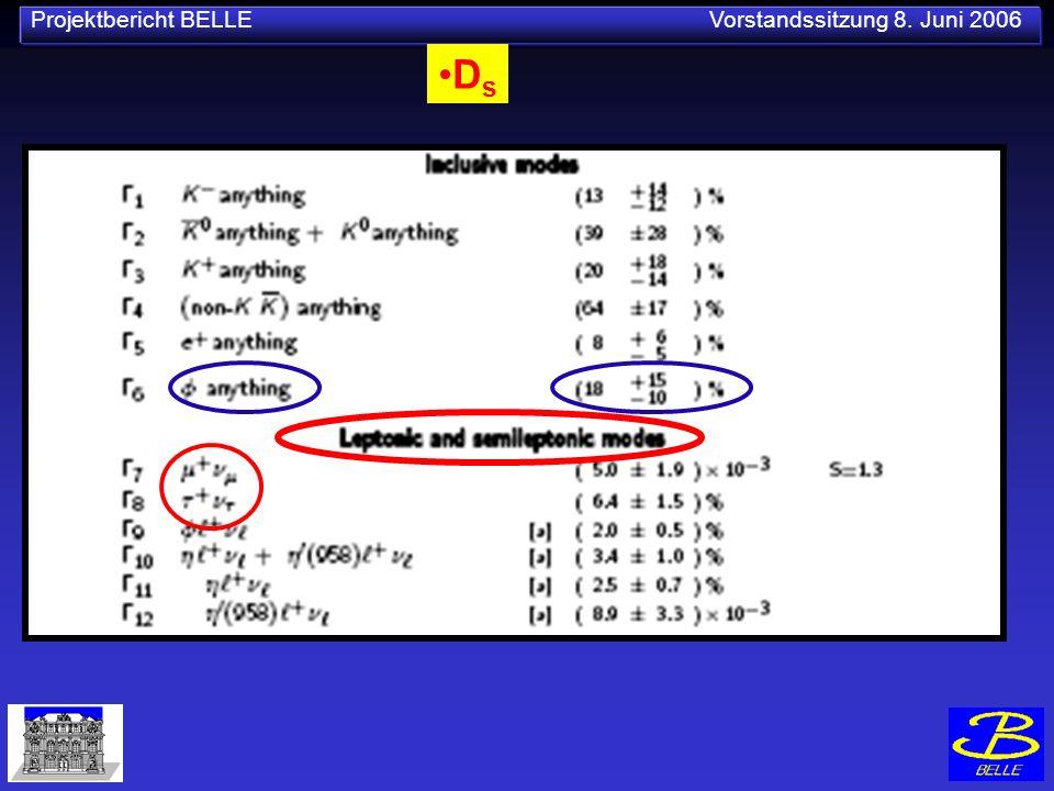 Projektbericht BELLE Vorstandssitzung 8. Juni 2006 D s