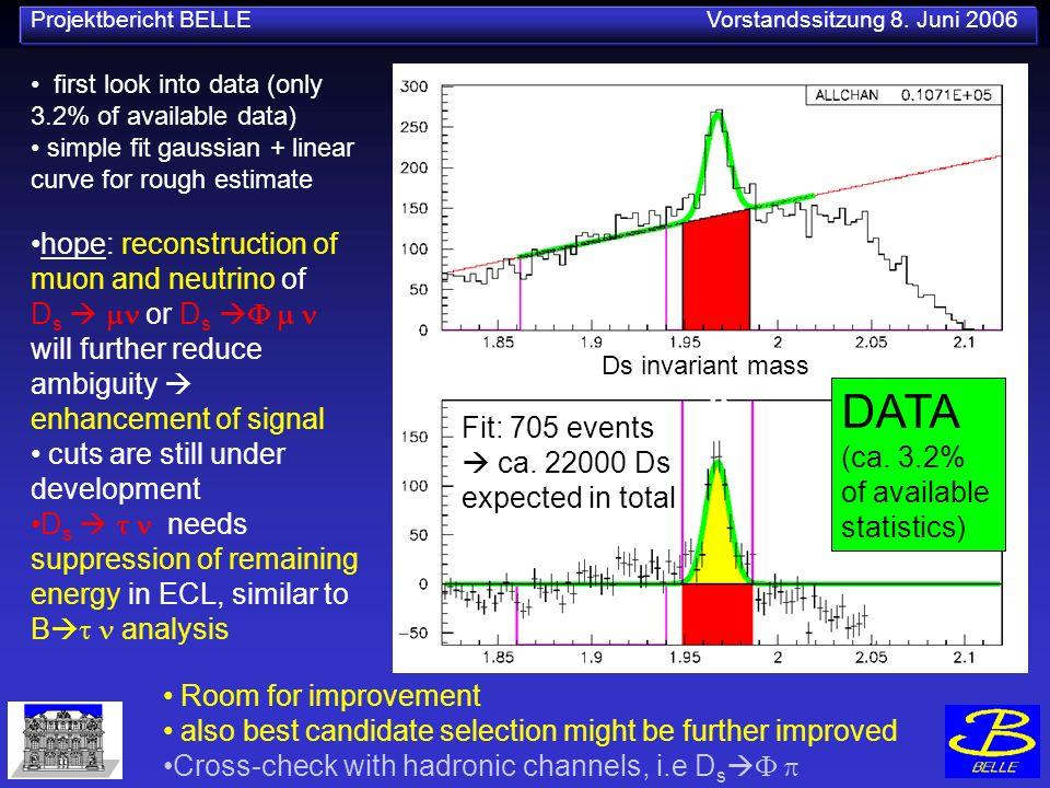 Projektbericht BELLE Vorstandssitzung 8. Juni 2006 DATA (ca.