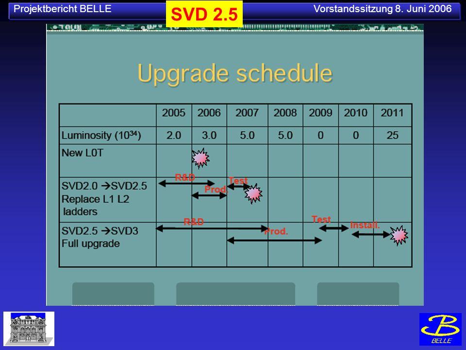 Projektbericht BELLE Vorstandssitzung 8. Juni 2006 SVD 2.5