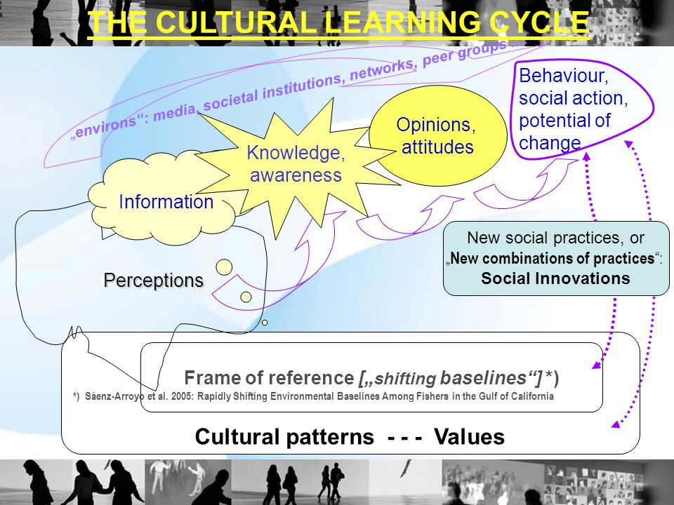 Cultural patterns - - - Values Frame of reference [ shifting baselines] *) Perceptions Information Opinions, attitudes Behaviour, social action, poten