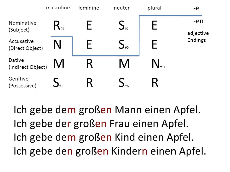 R ES E NES E MRMN +n S +s R R -e -en masculine feminineneuterplural adjective Endings Nominative (Subject) Accusative (Direct Object) Dative (Indirect