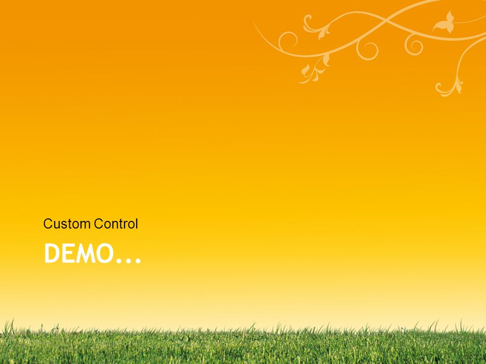 DEMO... Custom Control