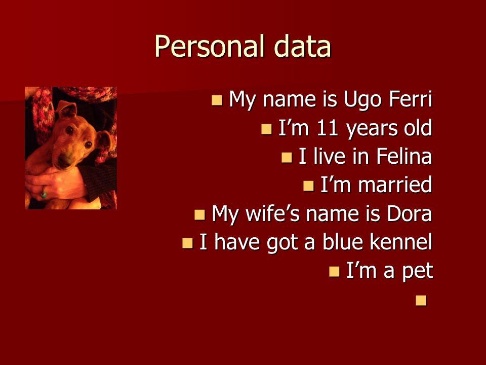 Personal data My name is Ugo Ferri My name is Ugo Ferri Im 11 years old Im 11 years old I live in Felina I live in Felina Im married Im married My wifes name is Dora My wifes name is Dora I have got a blue kennel I have got a blue kennel Im a pet Im a pet