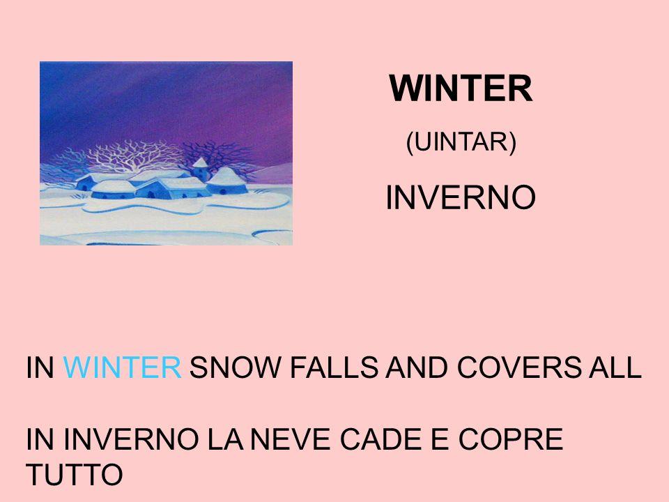 WINTER (UINTAR) INVERNO IN WINTER SNOW FALLS AND COVERS ALL IN INVERNO LA NEVE CADE E COPRE TUTTO