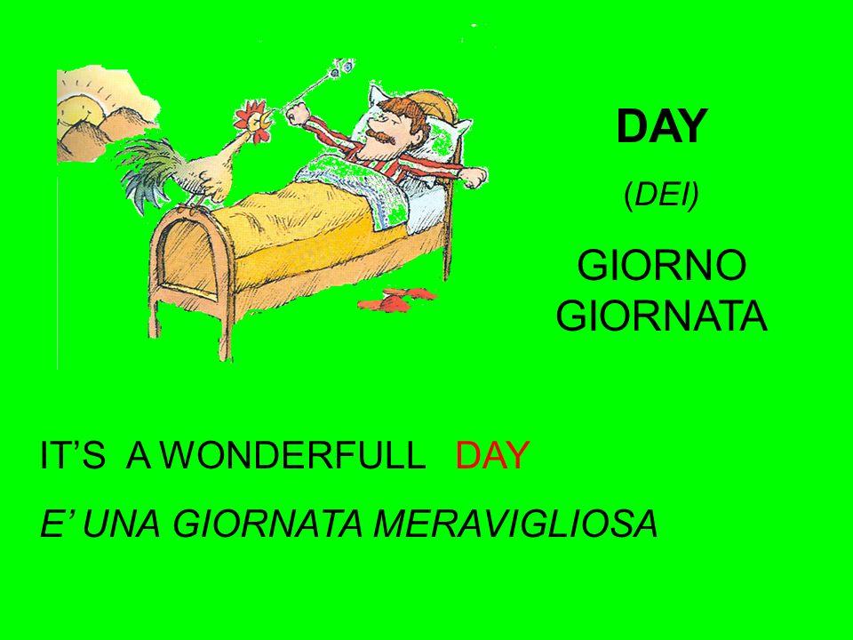 DAY (DEI) GIORNO GIORNATA ITS A WONDERFULL DAY E UNA GIORNATA MERAVIGLIOSA