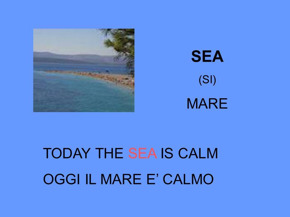SEA (SI) MARE TODAY THE SEA IS CALM OGGI IL MARE E CALMO