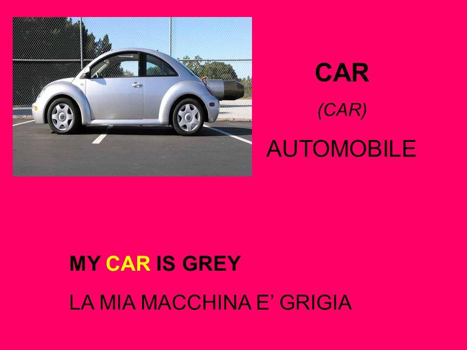 MY CAR IS GREY LA MIA MACCHINA E GRIGIA CAR (CAR) AUTOMOBILE
