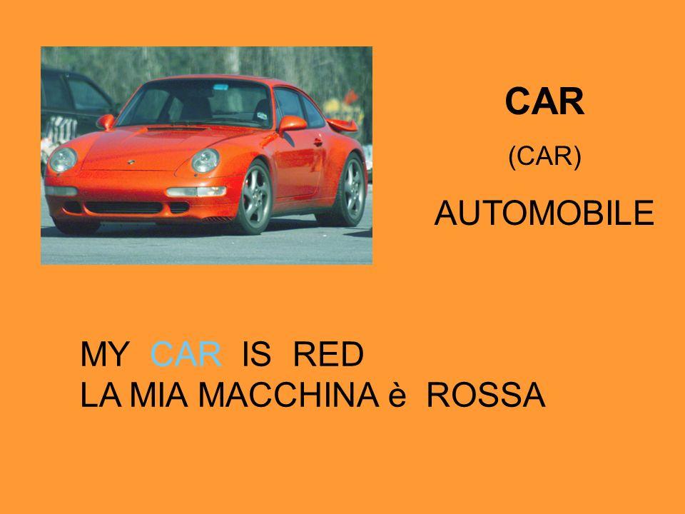 CAR (CAR) AUTOMOBILE MY CAR IS RED LA MIA MACCHINA è ROSSA