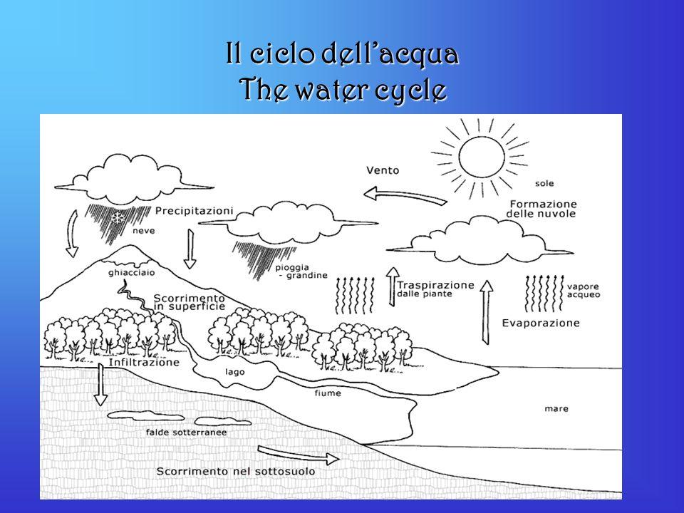 Il ciclo dellacqua The water cycle