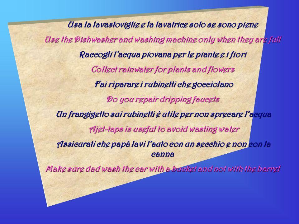Usa la lavastoviglie e la lavatrice solo se sono piene Use the Dishwasher and washing machine only when they are full Raccogli lacqua piovana per le p