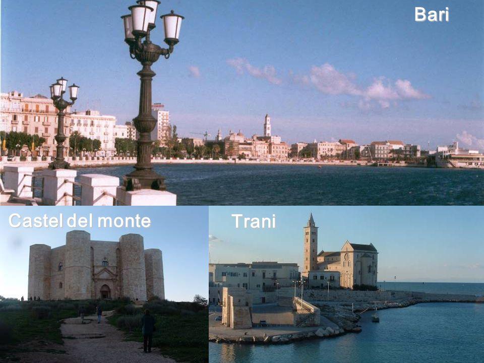 Politecnico di Bari, DEE, Power Electronics Research Group Marco Liserre liserre@ieee.orgBariTrani Castel del monte
