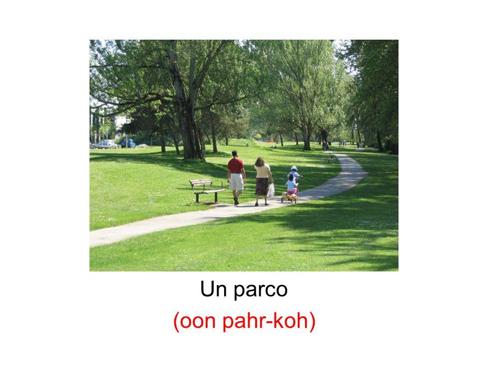 Un parco (oon pahr-koh)
