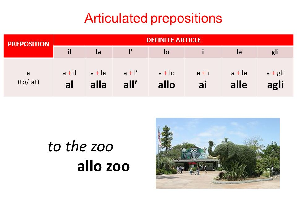 to the zoo allo zoo Articulated prepositions PREPOSITION DEFINITE ARTICLE illalloilegli a (to/ at) a + il al a + la alla a + l all a + lo allo a + i ai a + le alle a + gli agli