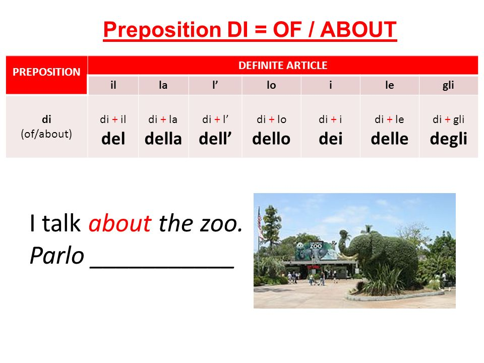 I talk about the zoo.