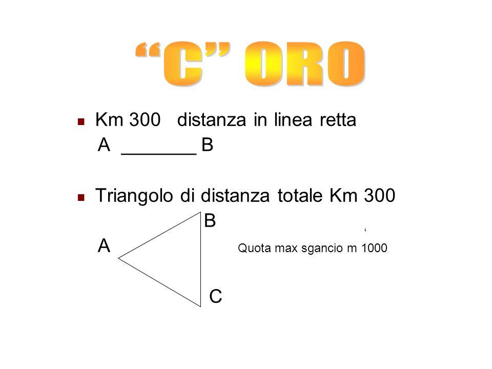 Km 300 distanza in linea retta A _______ B Triangolo di distanza totale Km 300 B A Quota max sgancio m 1000 C