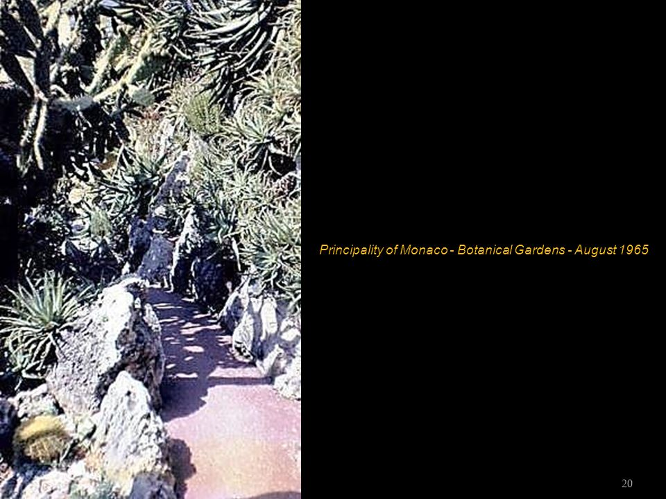 Principality of Monaco - Botanical Gardens - August 1965 19