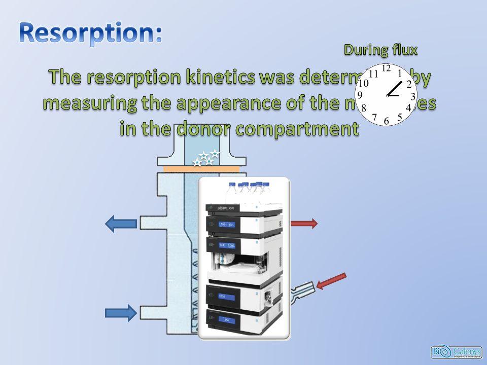 Sensitization index Keratinocytes NCTC2544 Haptenation Resorption Irritation index