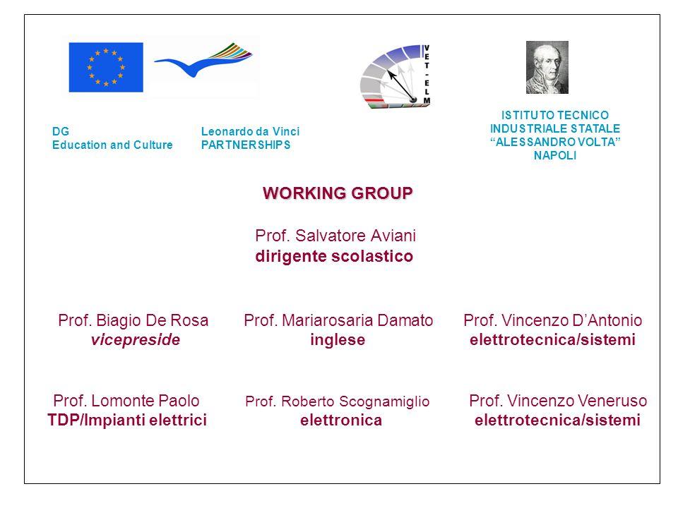 WORKING GROUP Prof. Salvatore Aviani dirigente scolastico Prof. Biagio De Rosa vicepreside Prof. Mariarosaria Damato inglese Prof. Vincenzo DAntonio e