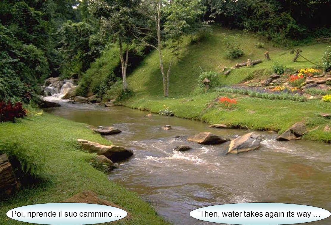 Poi, riprende il suo cammino …Then, water takes again its way …