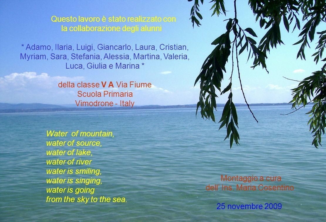 Questo lavoro è stato realizzato con la collaborazione degli alunni * Adamo, Ilaria, Luigi, Giancarlo, Laura, Cristian, Myriam, Sara, Stefania, Alessi