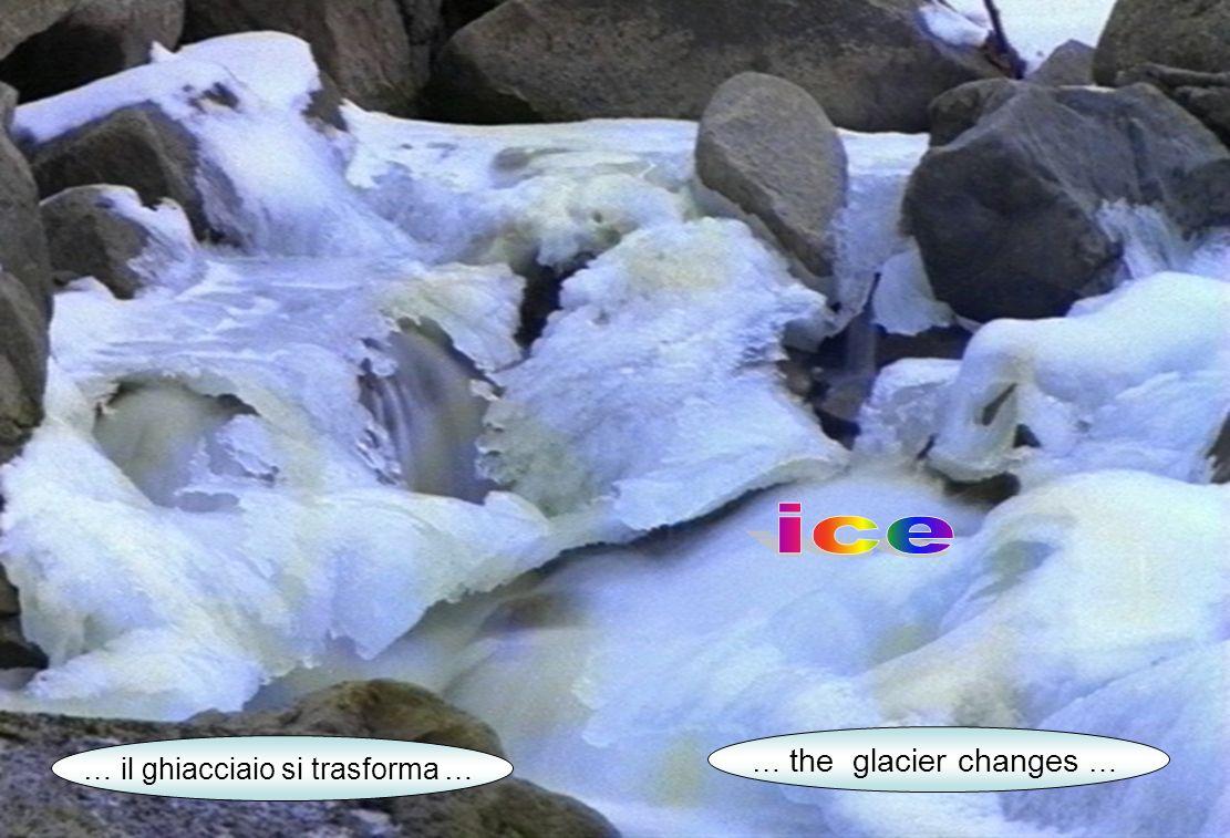 … il ghiacciaio si trasforma … … the glacier changes …