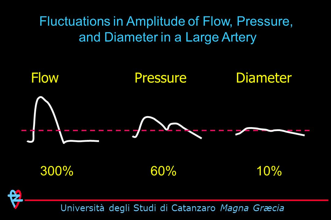 Fluctuations in Amplitude of Flow, Pressure, and Diameter in a Large Artery FlowPressureDiameter 300%60%10%
