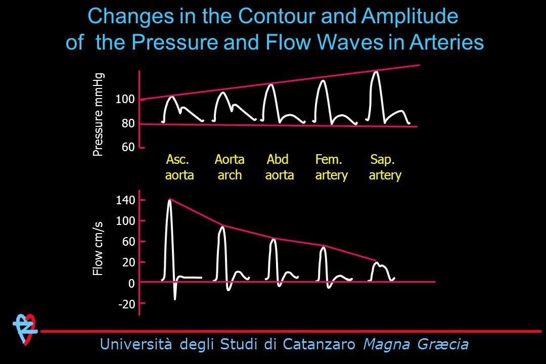 Università degli Studi di Catanzaro Magna Græcia 100 80 60 140 100 60 20 -20 0 Pressure mmHg Flow cm/s Asc.
