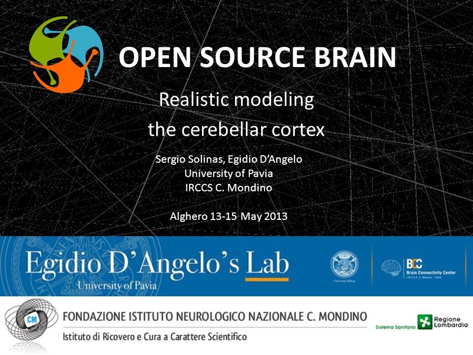 Realistic modeling the cerebellar cortex Sergio Solinas, Egidio DAngelo University of Pavia IRCCS C. Mondino Alghero 13-15 May 2013 OPEN SOURCE BRAIN