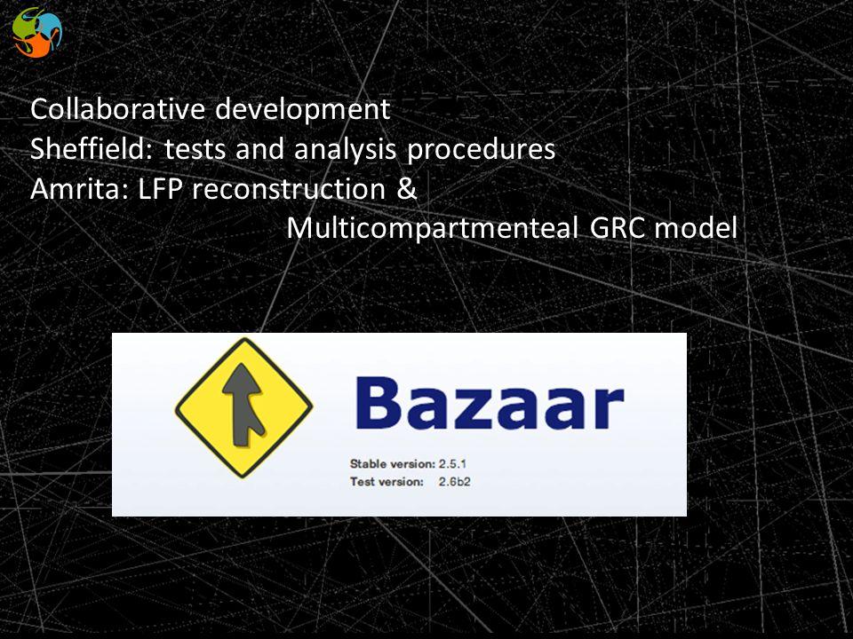 Collaborative development Sheffield: tests and analysis procedures Amrita: LFP reconstruction & Multicompartmenteal GRC model