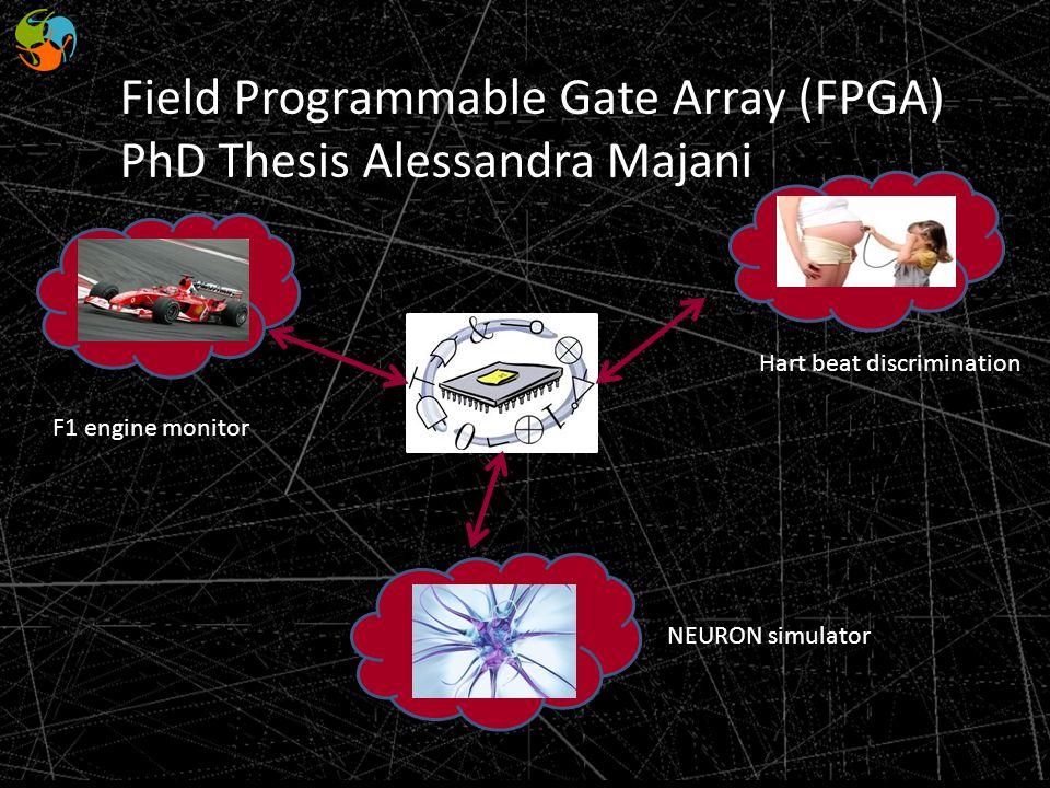 Field Programmable Gate Array (FPGA) PhD Thesis Alessandra Majani NEURON simulator Hart beat discrimination F1 engine monitor
