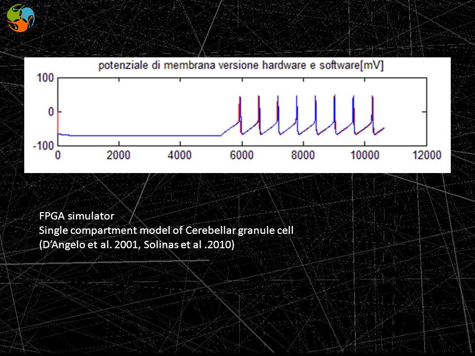 FPGA simulator Single compartment model of Cerebellar granule cell (DAngelo et al. 2001, Solinas et al.2010)