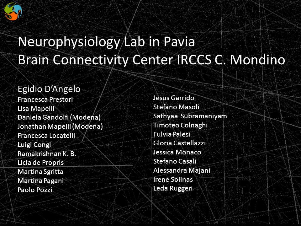 Neurophysiology Lab in Pavia Brain Connectivity Center IRCCS C. Mondino Egidio DAngelo Francesca Prestori Lisa Mapelli Daniela Gandolfi (Modena) Jonat