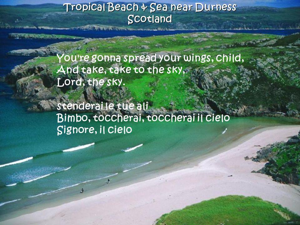 Manly Beach SydneyAustralia One of these mornings You re gonna rise, rise up singing, Una di queste mattine tu ti alzerai, ti alzerai cantando