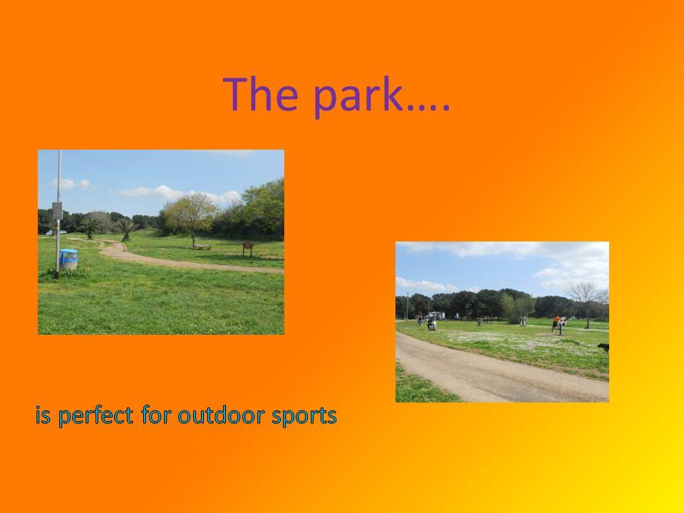 The park….