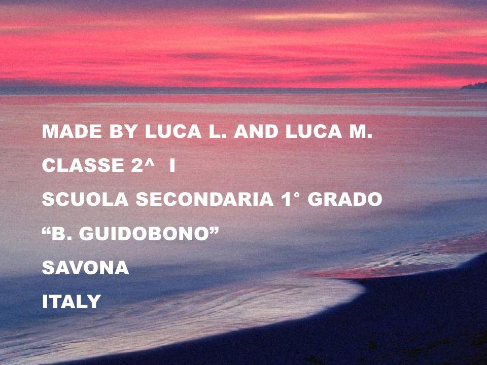 MADE BY LUCA L. AND LUCA M. CLASSE 2^ I SCUOLA SECONDARIA 1° GRADO B. GUIDOBONO SAVONA ITALY