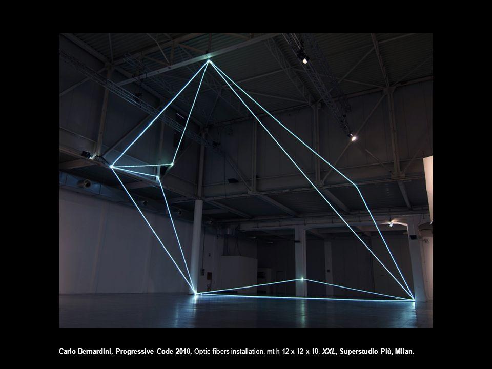 Carlo Bernardini, Progressive Code 2010, Optic fibers installation, mt h 12 x 12 x 18.