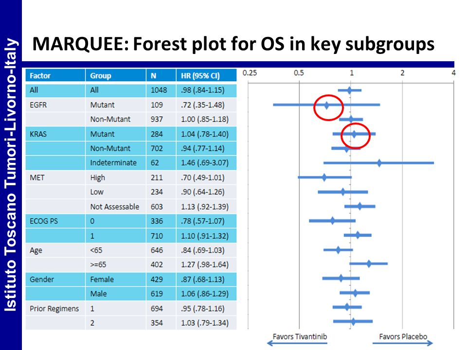 MARQUEE: Forest plot for OS in key subgroups Istituto Toscano Tumori-Livorno-Italy