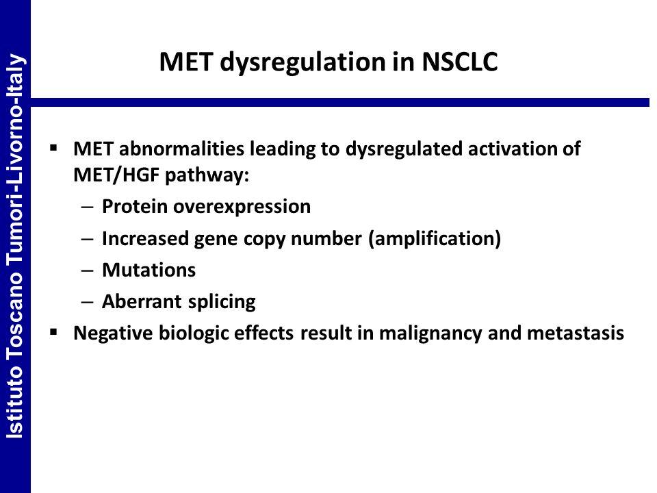 MET dysregulation in NSCLC MET abnormalities leading to dysregulated activation of MET/HGF pathway: – Protein overexpression – Increased gene copy num