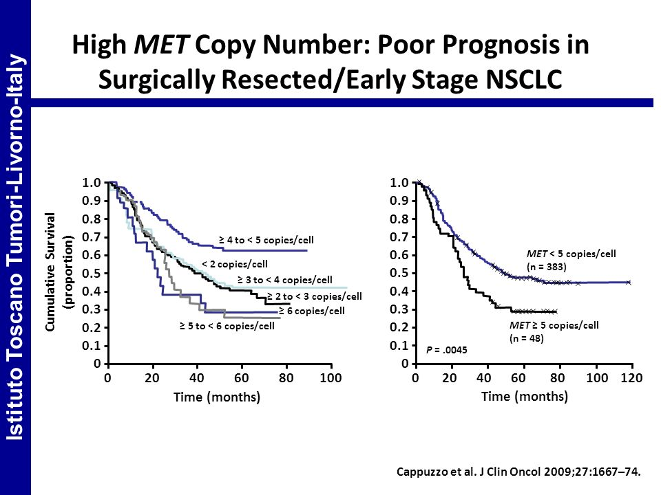 High MET Copy Number: Poor Prognosis in Surgically Resected/Early Stage NSCLC Cappuzzo et al. J Clin Oncol 2009;27:1667–74. 1.0 0.9 0.8 0.7 0.6 0.5 0.