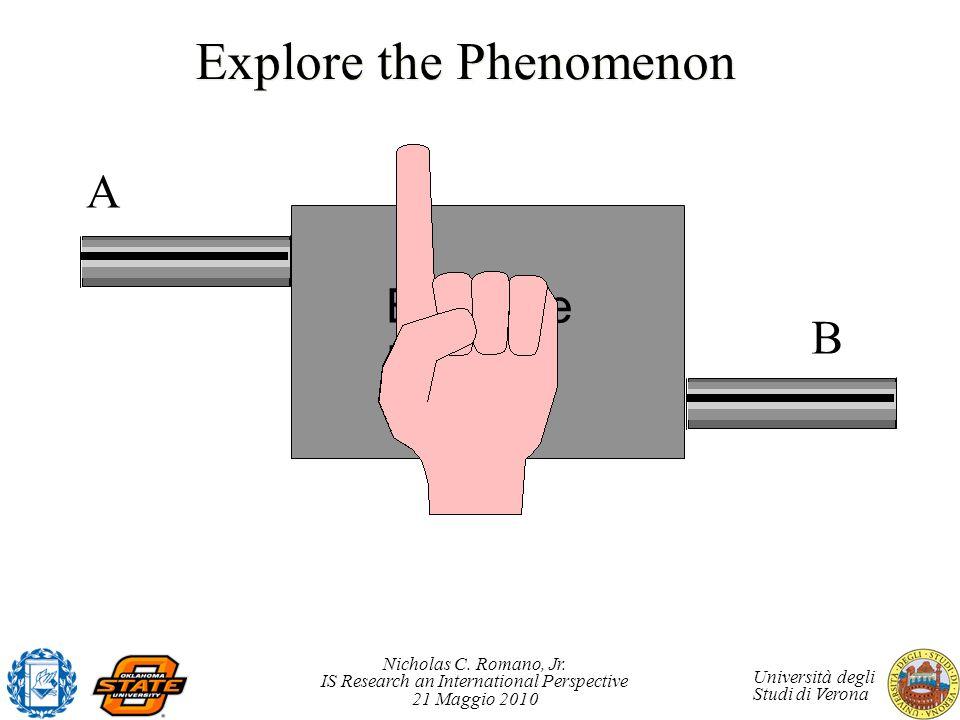 Nicholas C. Romano, Jr. IS Research an International Perspective 21 Maggio 2010 Università degli Studi di Verona Explore the Phenomenon Bobezite Block