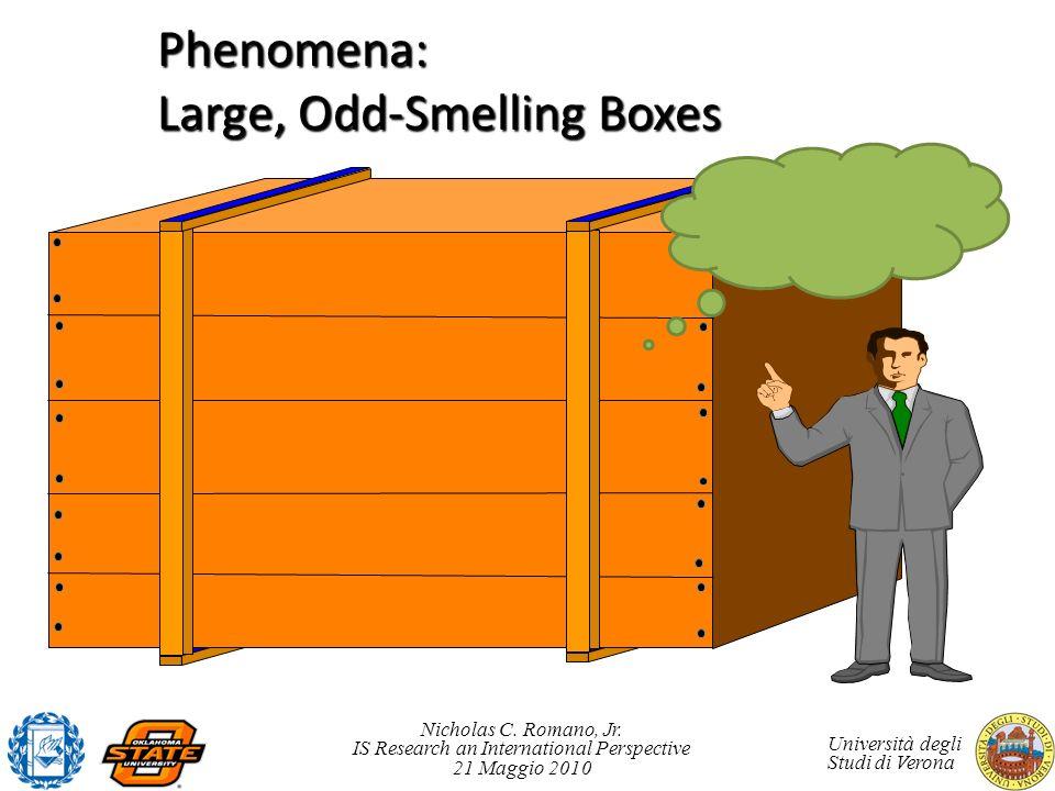 Nicholas C. Romano, Jr. IS Research an International Perspective 21 Maggio 2010 Università degli Studi di Verona Phenomena: Large, Odd-Smelling Boxes