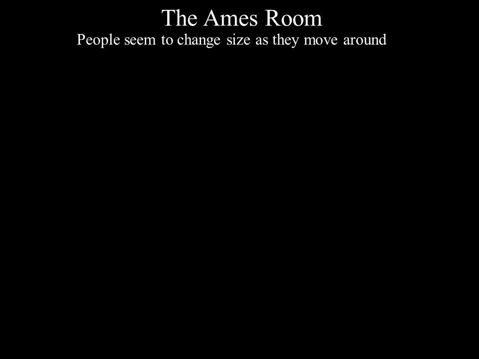 Nicholas C. Romano, Jr. IS Research an International Perspective 21 Maggio 2010 Università degli Studi di Verona The Ames Room People seem to change s
