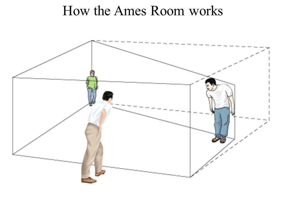 Nicholas C. Romano, Jr. IS Research an International Perspective 21 Maggio 2010 Università degli Studi di Verona How the Ames Room works