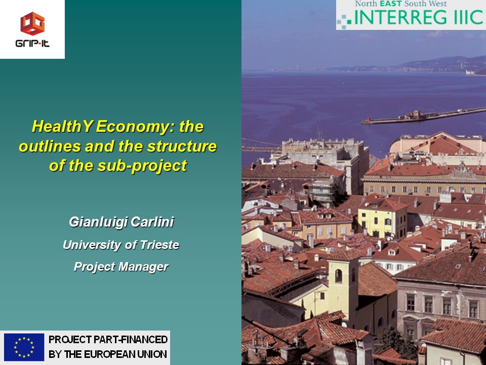 1 HealthY Economy: the outlines and the structure of the sub-project Gianluigi Carlini University of Trieste Project Manager